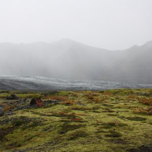 Alien landscape Iceland