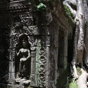 Scenes from the Tomb Raider -  the ruins of Ta Prohm
