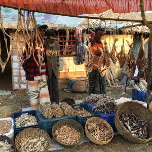 Fish Dublar Char Bangladesh Fishermen Fishing Sunderbans shutki